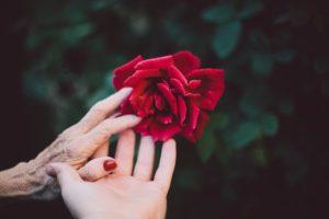Psicologia del lutto: dai modelli descrittivi alla pratica clinica